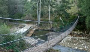 Abercrombie Karst Conservation Reserve